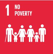 No-Poverty